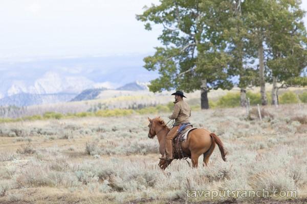 gallery_ranch_photo_gallery_VvN8bJNLT9h7ZqwI.jpg