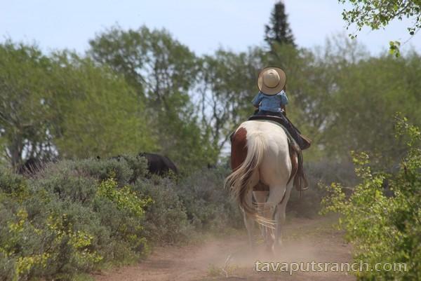 gallery_ranch_photo_gallery_ZjX0goRKoSuLO2Gl.jpg