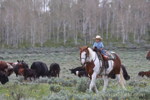 gallery_ranch_photo_gallery_qHgJPTDLuxewXI3b.jpg