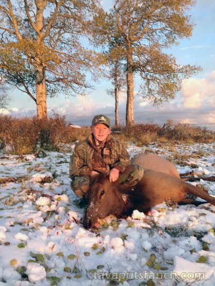 hunts_cow_elk_1aYGt4EI15yRVACy.jpg