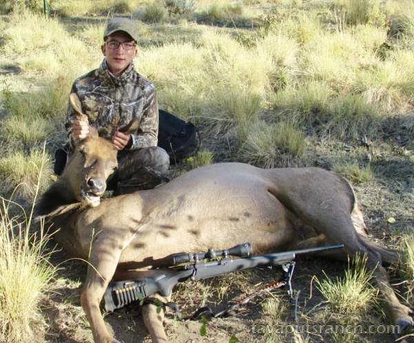 hunts_cow_elk_6VYW3poiXNNPA8FV.jpg