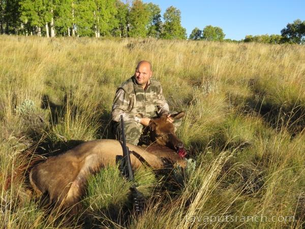 hunts_cow_elk_DWBTVcIko1PWiplu.JPG