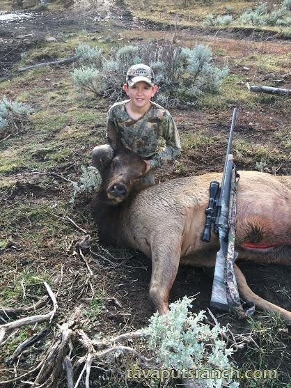 hunts_cow_elk_OrNX1J7GleazN2MT.jpg